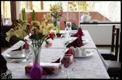 آبنوس میزبان شایسته ی دورهمی های شما خوبان.. با خیال راحت مهمانی ها و مجالس تان را به آبنوس بسپارید. تلفن تماس:٣٤٢٢٢٤٤٥ آدرس: مشهد - طرقبه - نبش عنبران 4