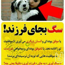 ،فاجعه وقتی رخ می دهد که غربی ها با استفاده از رسانه و تبلیغات، فرزند آوری و دوری از حیوانات خانگی را برای خانواده های خودشان نهادینه می کنند و این زنگ خطر را به هر نحوی یادآور می شوند ولی برای کانون گرم خانواده های ایرانی نگه داری از سگ به جای فرزند را بنیان می نهند.