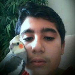 من و بهترین دوستم تیتو