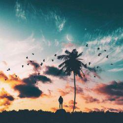 عادم ها :) با هم لب خند هستن د :) دوور نشوی م از هم :) زندگی ما هستی م :) ع ما نمیدانم چرا میگوی ند :) نبض ه ما دست ه زندگی ع ست  :) در نفص ه پنجره ها :) صبح ه یک روز ه صفید میچرخد :) دیده ام چند روزی دوور شده ای :) عامدنت :) ب دل ه ما :) لب خند :) باران ؟ :) بارید فردای عان روز :) دوور نشویم از هم :) عاره :)