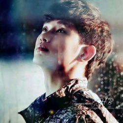 Good Night My Dear Precious Sunshine ❤