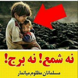  نه شمع ! نه برج !  ...مسلمانان مظلوم میانمار... نه شمعی به ایشان روشن شد نه چراغها برجها بزرگ خاموش نه حتی دقایقی سکوت،مدعیان حقوق بشر همچنان خفته اند!