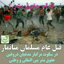 از استخوان در گلوی مسلمانان میانمار بگوییم یا از خار در چشم مسلمانان یمن و سوریه و عراق .... حکایت مظلومیت امت رسول الله پایانی ندارد.