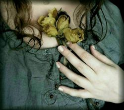 دل را قرار نیست،مگر در کنار تو... #حسین_منزوی