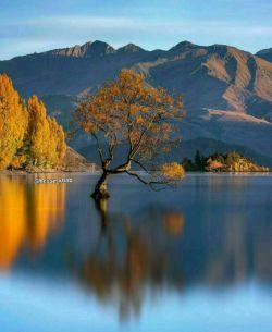 #طبیعت زیبا#زیباترین خالق