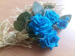 @sh.e.047  ... جهانم تویی..❤️ چنان دورت میگردم که هیچکس..  به این زیبایی... جهانگردی راتجربه نکرده است ... عشقم❤️دنیامی  خودت گلی عزیزم احتیاج ب گل نبود تقدیم بخودت نفسم