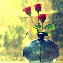 زخمها زد راه بر جانم ولی زخمِ عشق آورده تا کویت مرا/ خوب شد دردم دوا شد، خوب شد... دل به عشقت مبتلا شد، خوب شد...  #اهورا_ایمان