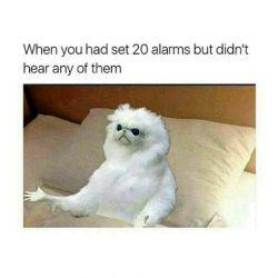 وقتی 20 تا آلارم تنظیم میکنی ولی یکیش هم نمیشنوی:/