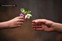 حسی که تو این لحظه به آدم دست میده فوق العادس❤️❤️❤️❤️❤️❤️❤️❤️❤️❤️❤️❤️  گل خریدن هیچ وقت به این راحتی نبوده خرید آنلاین گل و ارسال به سراسر كشور www.golegoldoon.com