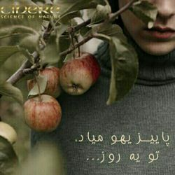 پاییز را دوست دارم چون معافم می کند از پنهان کردن دردی که در صدایم می پیچد  اشکی که در نگاهم می چرخد ...  آخر هم خیال می کنند که سرما خورده ام
