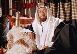 فیلم سینمایی لورنس عربستان  www.filimo.com/m/Rgj46