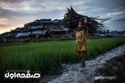 کودک مسلمان روهینگیایی که به بنگلادش مهاجرت کرده و برای خانواده اش هیزم میبرد.