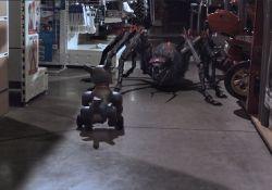 فیلم سینمایی عنکبوت ها  www.filimo.com/m/ekypU