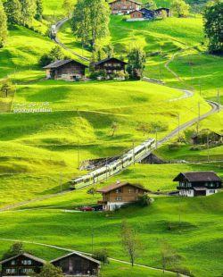 عبور قطار از دامنه های سبز و مخمل گونه گریندلوالد در کشور سوئیس