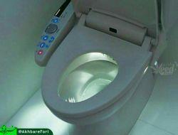 در ژاپن به کسانی که مکانهای عمومی و توالتها را تمیز میکنند رفتگر یا حتی پاکبان گفته نمیشود!  آنان 'مهندس بهداشت' نامیده میشوند و حقوقی معادل ۳۰ میلیون تومان دارند!