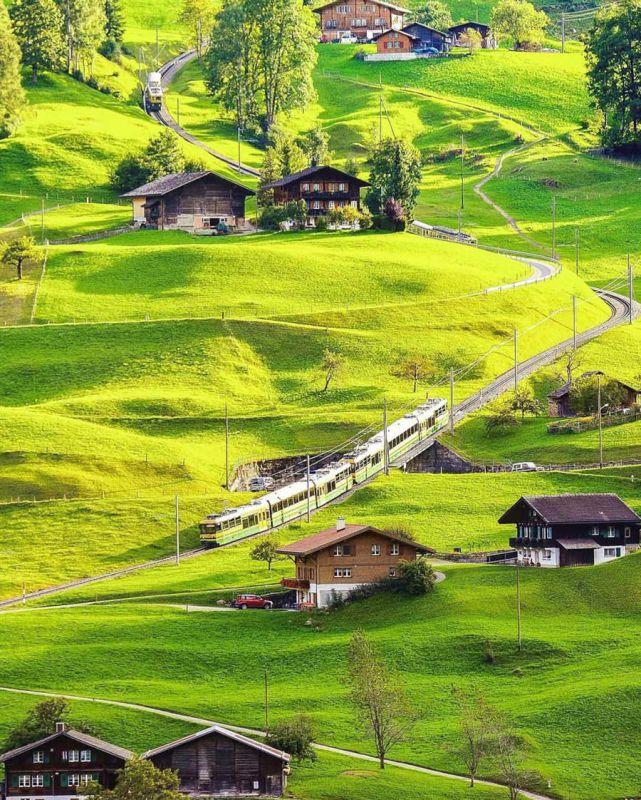 عبور قطار از دامنه های سبز و مخملی گریندلوالد سوئیس