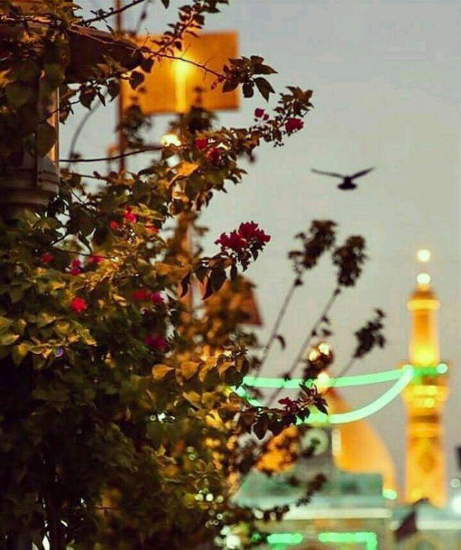 #السلام_حضرٺ_ارباب❤️  خوش باد نسیمے ڪه ز ایوانِ تو باشد  شاد اسٺ هر آنڪس ڪه پریشانِ تو باشد  ای ڪاش ڪه صد بار ز عشقِ تو بمیرم  هر بار سرم بر روے دامانِ تو باشد