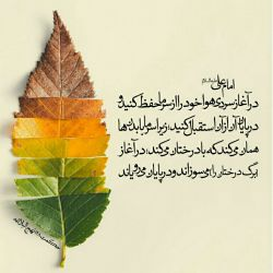 سجده و اشک و استغاثه علی    شرف و عزت و حماسه علی     هر چه خوبی که آفریده خدا      همه یک جا شده خلاصه:علی