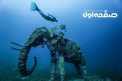 شنا در کنار مجسمه فیل در دریای سرخ؛ سواحل مصر