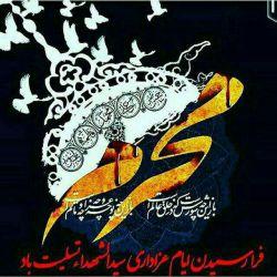 ایام شهادت ابا عبدالله حسین تسلیت باد.