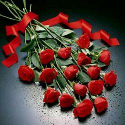 سلام.شنبه تون بی نظیر هزارسلام به نشانه ی هزاردعای سلامتی وهزاردرودبه نشانه ی هزارآرزوی زیبا .تقدیم شما دوستان عزیزباد.......روزتان چون گل زیبا