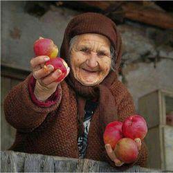 بفرمایید... تقدیم به همه ی مادر بزرگ های گل ایران زمین