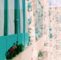 عکست را لای کتاب عطرت را بین نخ های شالگردن یادت را کجای این خانه پنهان کنم ... ؟