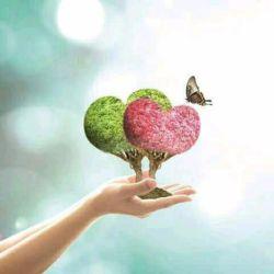 یه روز.. تمام رویاهات..  به حقیقت می پیوندند .... صبور باش..
