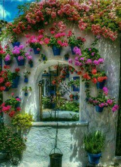 خانه ای که مادر درآن نفس بکشد....هیچ گلدانی خشک نمیشود...وقت دوستان عزیزم بخیر.یادی کنیم ازهمه مادران فداکار.چه آنهایی که دربین ماهستندوچه آنهایی که به رحمت خدا رفته اند....دوستت دارم مادر