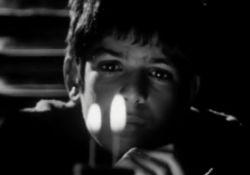 فیلم مستند از کوچه تا کن      www.filimo.com/m/KQgLp