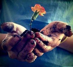 زندگی ساختنی است نه ماندنی، بمان برای ساختن نساز برای ماندن ...  منتظر نباش کسی برایت گل بیاورد تلاش کن، بذری بکار و از آن مراقبت کن خود صاحب گل خواهی شد!