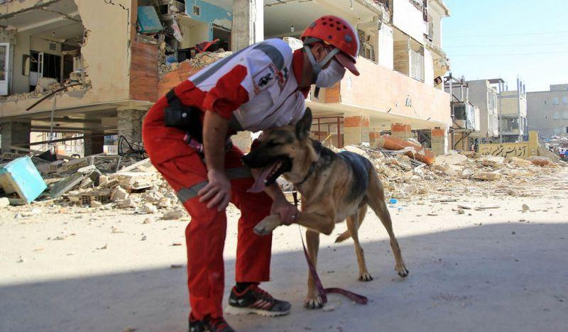 امدادرسانی و آوار برداری در مناطق زلزله زده