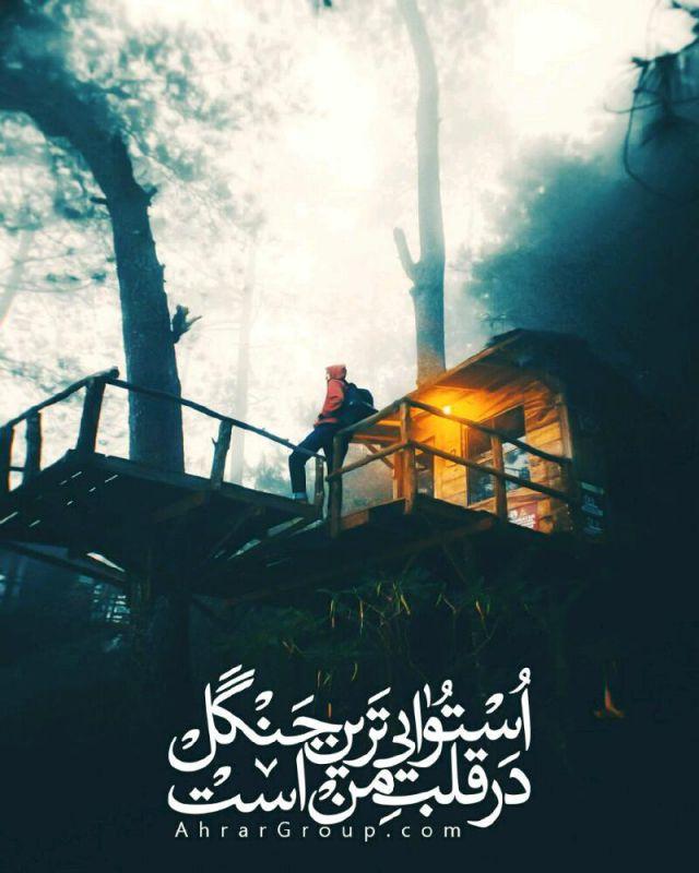 باران زا ترین ابر در استوایی ترین جنگل نیست در قلب من است وقتی هستی ولی نمی دانم کجایی...