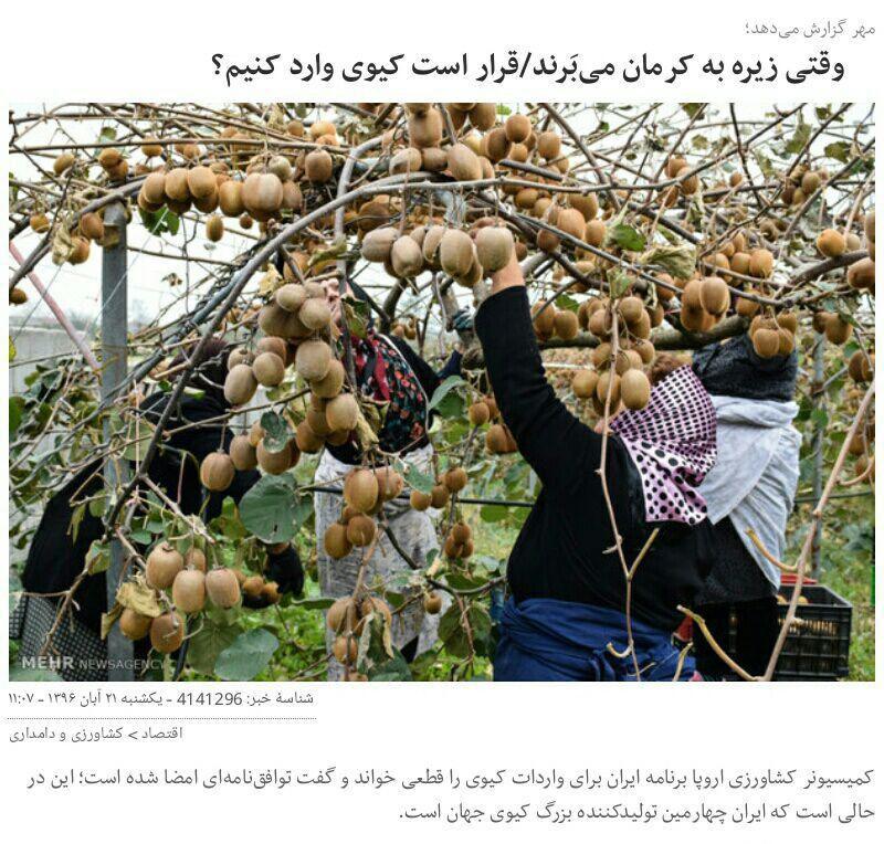 ایران چهارمین تولیدکننده کیوی جهان است و دولت روحانی جهت نابودی این محصول داخلی با اتحادیه اروپا برای #واردات این میوه توافق کرده!