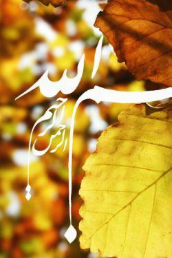 صبح آمده، برخیز و بگو :بسم الله. سرشار ز نعمتی تو ماشاءالله!  بسپار به دوست هرچه را می خواهی، لاحول و لا قوه الا بالله. سلام دلتان زلال وآسمانی زندگی تان پاک وخدایی. حلول ربیع پر برکت بر شما مبارک.