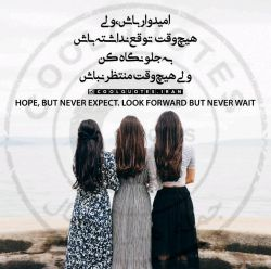 #امیدوار باش ولی هیچ وقت #توقع نداشته باش به جلو نگاه كن ولی هیچ وقت #منتظر نباش.