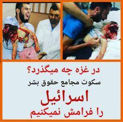 از گزاشتن این عکس عذرخواهی میکنم ولی حقیقت  امروز دنیا هست... در غزه چه میگزرد؟؟؟؟  در سکوت رسانه های دنیا!!!