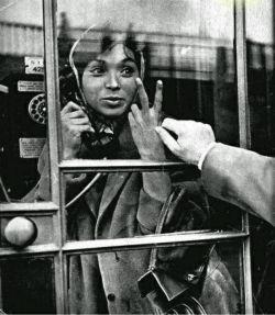 گر دریابیم که تنها دو دقیقه برای بیان آنچه میخواهیم بگوییم فرصت داریم، تمام باجه های تلفن از افرادی پر می شد که می خواهند به دیگران بگویند آنها را دوست دارند...  #کریستوفر_مورلی