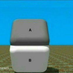 این تصویر رو ☝️ ببینید ، مرز دروغ و حقیقت شبیه همینه ، شما 2 رنگ متفاوت را میبینید ، در حالی که هر دو همرنگ هستند ! برای دیدن رنگ اصلی کافیه با انگشتتون خط وسط دو قطعه رو بپوشونید