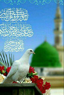 سلام  میلاد حضرت محمد ص بر عاشقانش مبارک باشه همگی عاقبت بخیر باشید با عزیزانتان روزگاراتان خوش بگذره همیشه.