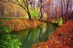 دو قدم مانده که پاییز به یغما برود این همه رنگ ِقشنگ از کف ِدنیا برود  هرکه معشوقه برانگیخت گوارایش باد دل ِتنها به چه شوقی پی ِیلدا برود؟-------- تصویر از پارک ساحلی سرارود در شهرستان مبارکه استان اصفهان
