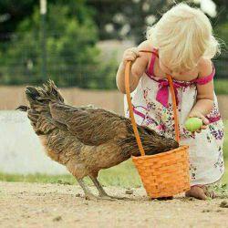مذهب من بسیار ساده است....مذهب من،مهربانیست ....