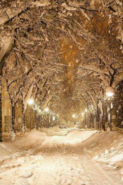 بودنت مثل خوردن شیرکاکائوی داغ اونم توسرمای بهمن وبارش برف......عجب حالموخوب میکنه.....
