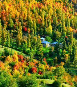 نمایی زیبا از در هم آمیختن رنگها در فصل رویایی و خاطره انگیز پاییز