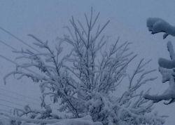 اولین برف سال