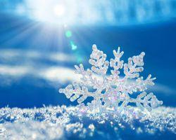 پاییز سرماخورده را ورق میزنیم. شاید از پس کوران خاطرات پاییزی آینده رابیابیم. پاییزراباهزاران امید به دست سرمای زمستان می سپاریم. امیدواریم فصل زمستان فصل بهترین ها باشد WWW.Donya-Digital.com