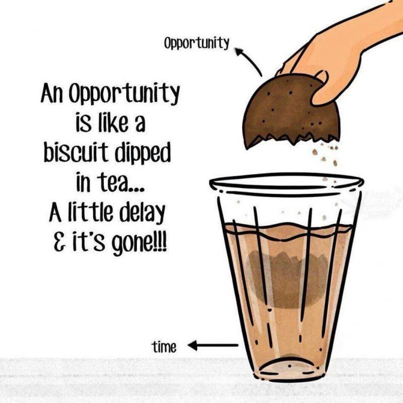 فرصتها مانند بیسکویتی هستند که با چای خیسش میکنیم، کافیست کمی تعلل کنیم، به راحتی از دستشان خواهیم داد...