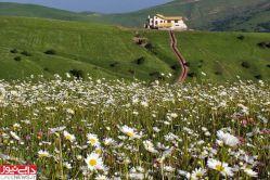 طبیعت زیبای حیران آستارا-گیلان