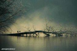طبیعت زیبای گیلان