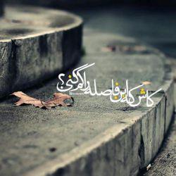 عاشق امام شدن به دیدن ظاهری نیست...شمر هم امامش را دید.............#دل باید #تطهیر شود تا همه ی هستیمان را در ره #عشق یوسف زهرا فدا کنیم.....